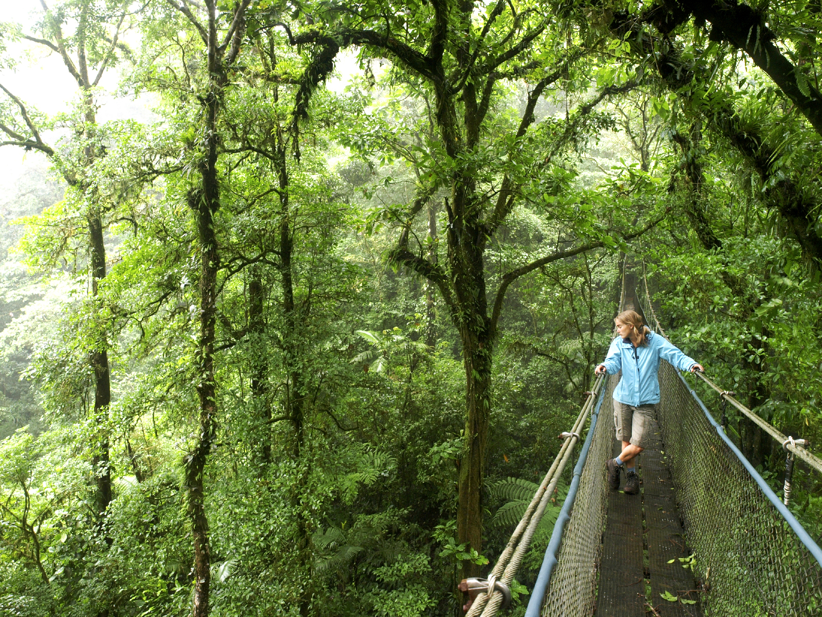 Captivating Costa Rica - Vacation Packages by Friendly